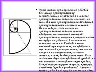 Этот малый прямоугольник подобен большому прямоугольнику, составленному из кв