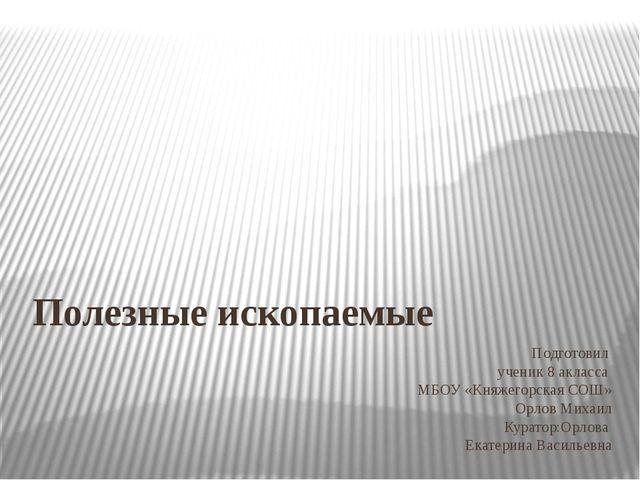 Подготовил ученик 8 акласса МБОУ «Княжегорская СОШ» Орлов Михаил Куратор:Орло...
