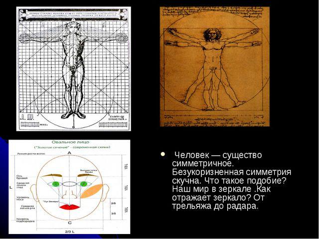 Человек — существо симметричное. Безукоризненная симметрия скучна. Что такое...