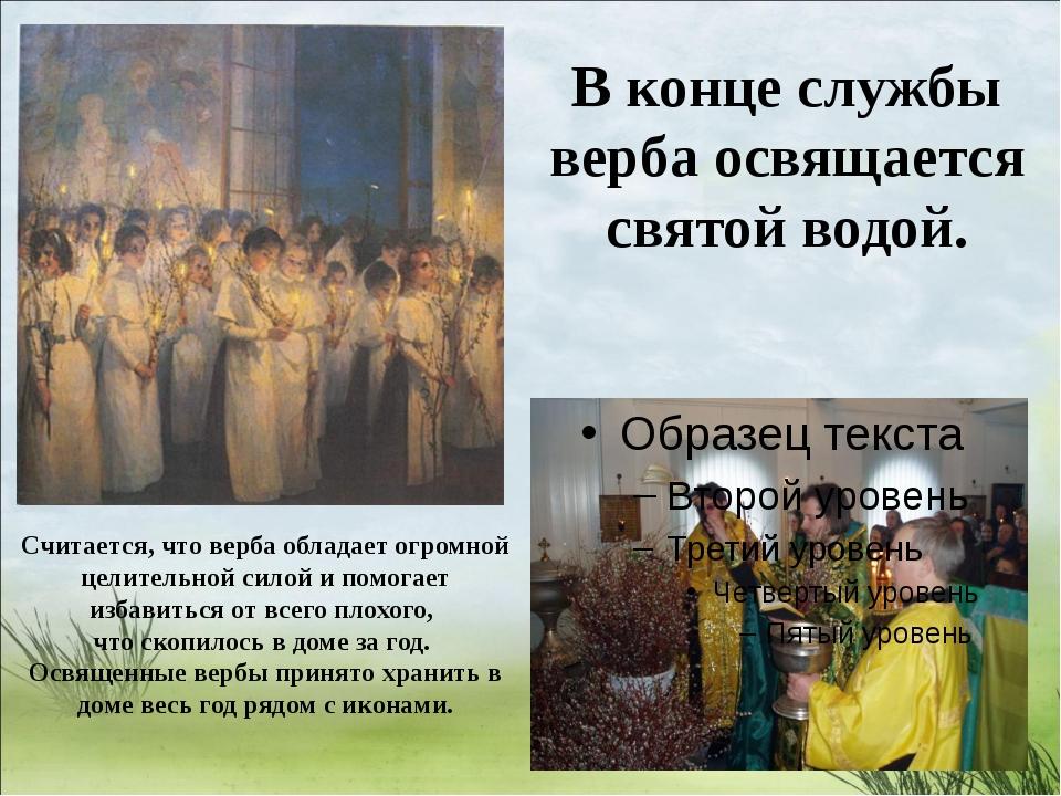 В конце службы верба освящается святой водой. Считается, что верба обладает...