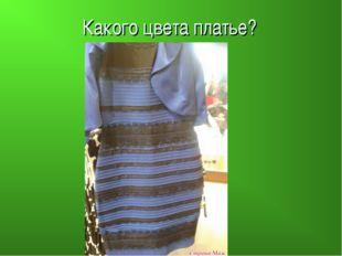 Какого цвета платье?