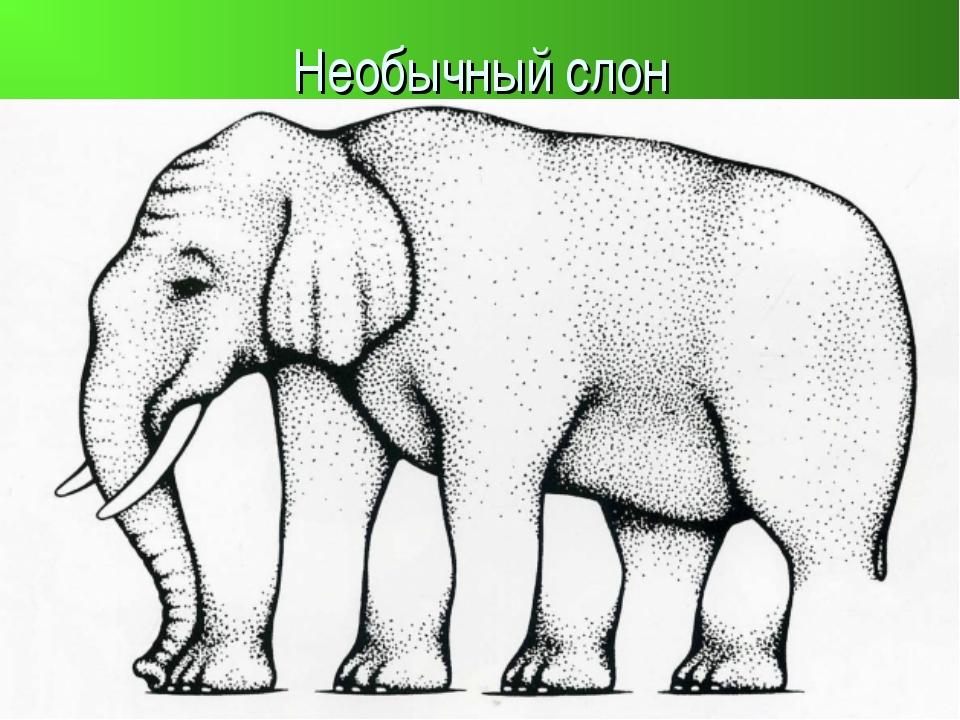 Необычный слон