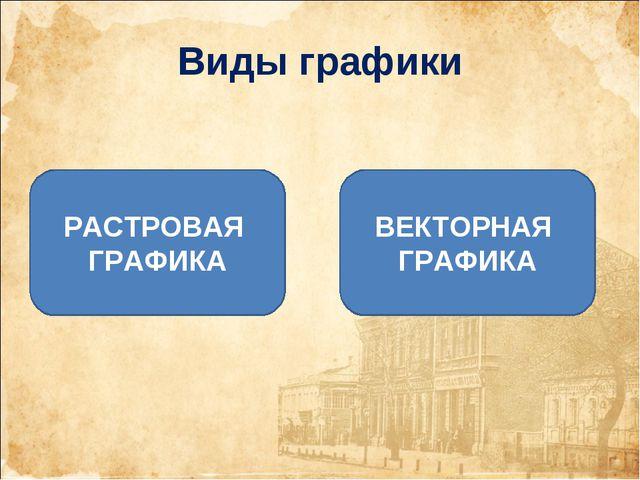 Виды графики РАСТРОВАЯ ГРАФИКА ВЕКТОРНАЯ ГРАФИКА