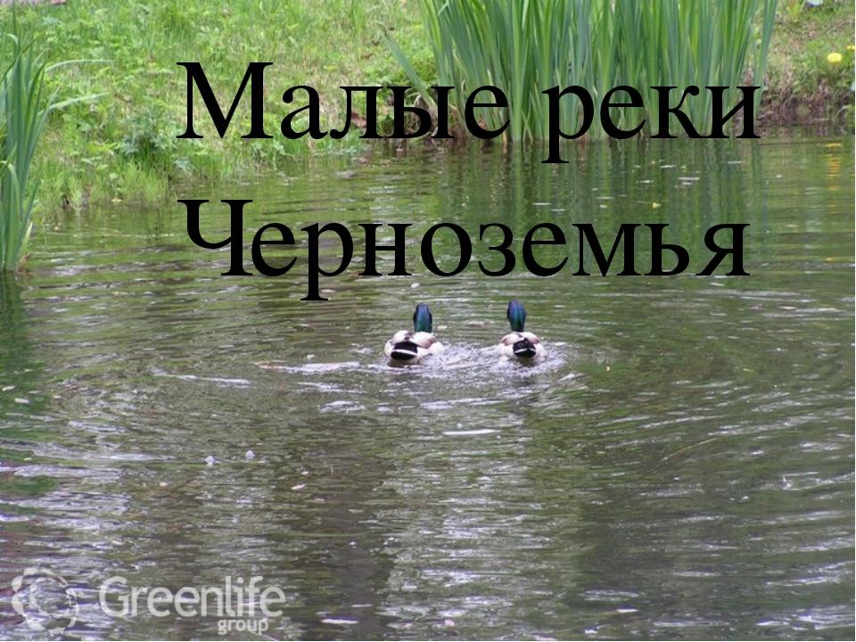 Малые реки Черноземья Малые реки Черноземья