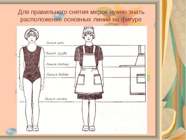 Для правильного снятия мерок нужно знать расположение основных линий на фигуре
