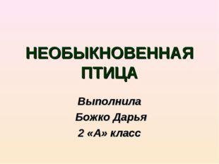 НЕОБЫКНОВЕННАЯ ПТИЦА Выполнила Божко Дарья 2 «А» класс