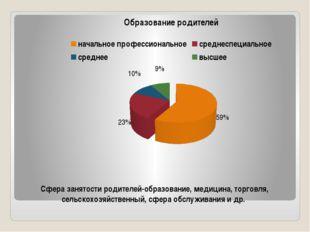 Сфера занятости родителей-образование, медицина, торговля, сельскохозяйственн