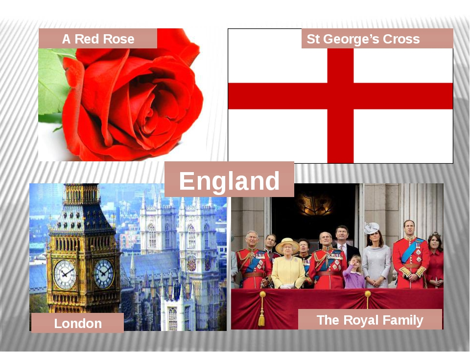 A Red Rose St George's Cross London The Royal Family England