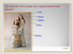Как звучат эти слова на старославянском языке? ОТВЕТ ЛОБ ГЛАЗА ЩЕКИ ГУБЫ ПАЛЕЦ