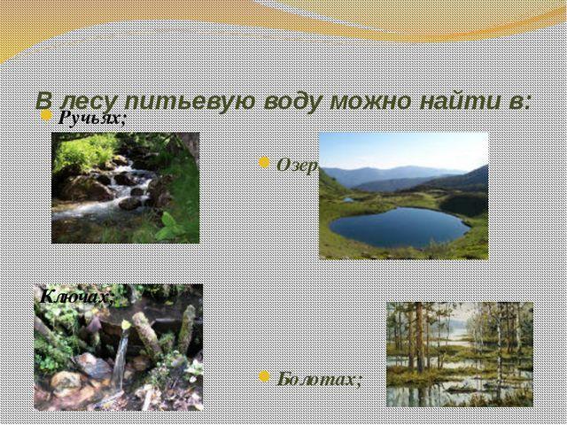 В лесу питьевую воду можно найти в: Ручьях; Ключах; Озерах; Болотах;