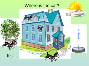 Where is the cat? It's …