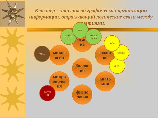 Кластер – это способ графической организации информации, отражающий логически...