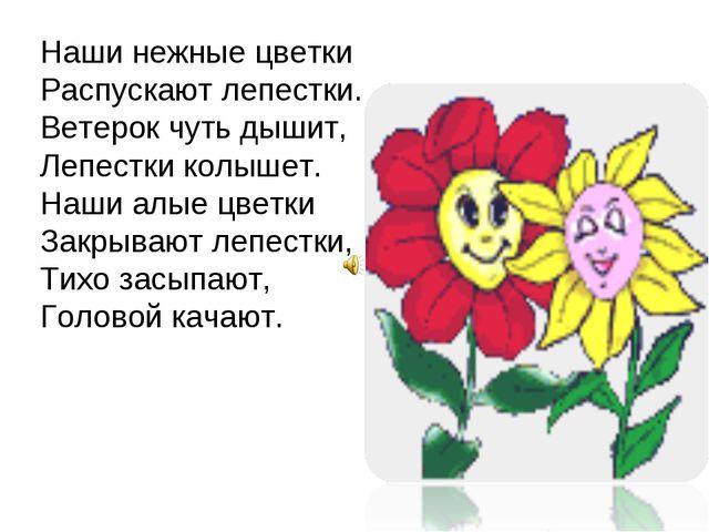 Наши нежные цветки Распускают лепестки. Ветерок чуть дышит, Лепестки колышет....