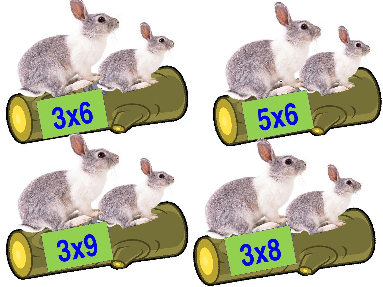 3х6 5х6 3х9 3х8