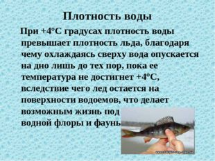 Плотность воды При +4°С градусах плотность воды превышает плотность льда, бла