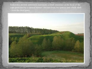 Sinkovsky ancient settlement represents a small eminence at the head of the c