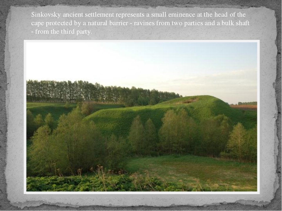 Sinkovsky ancient settlement represents a small eminence at the head of the c...