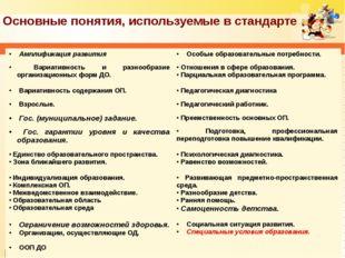 Основные понятия, используемые в стандарте Амплификация развития Особые обра