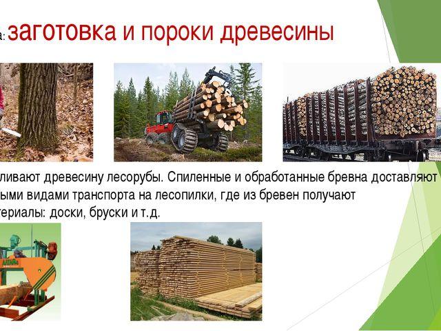 Тема урока: заготовка и пороки древесины Заготавливают древесину лесорубы. Сп...