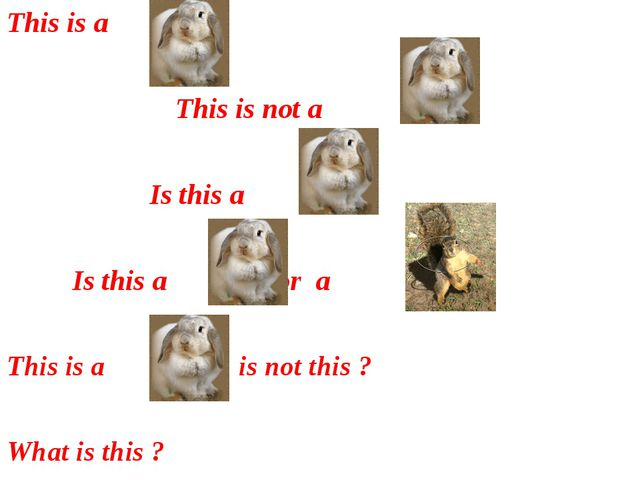 This is a This is not a Is this a ? Is this a or a ? This is a , is not this...