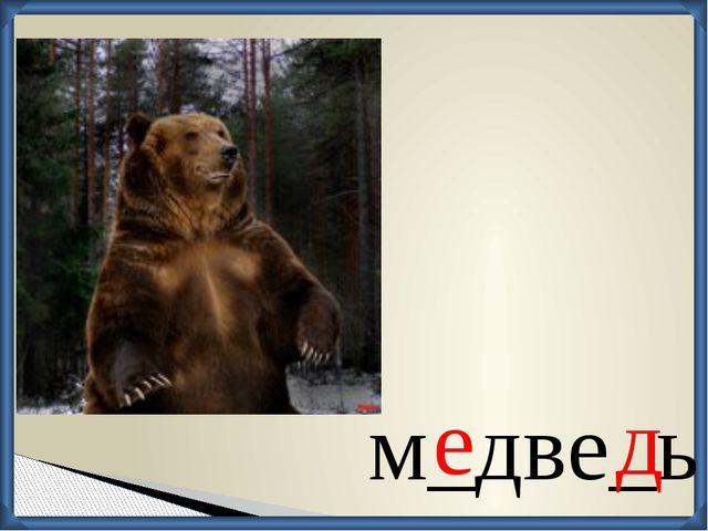 м_две_ь е д