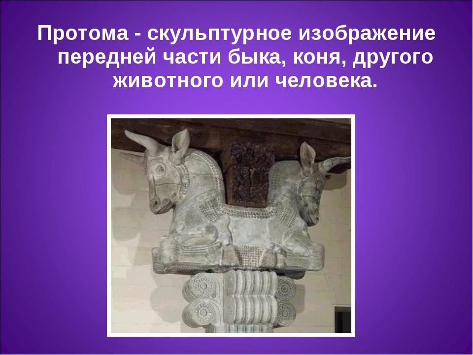 Протома- скульптурное изображение передней части быка, коня, другого животно...