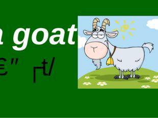 By Nooshin ShahMansoori a goat /ɡəʊt/