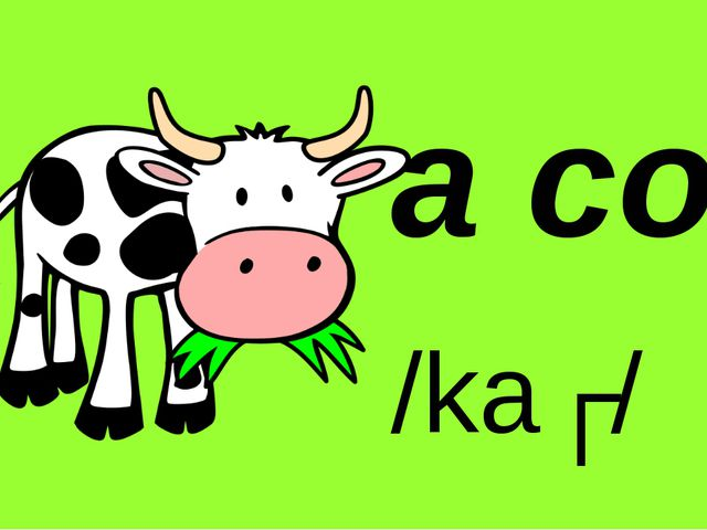 By Nooshin ShahMansoori a cow /kaʊ/