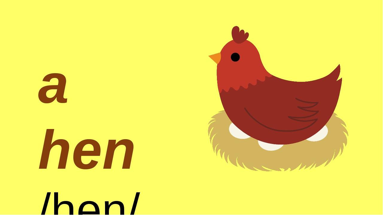 By Nooshin ShahMansoori a hen /hen/