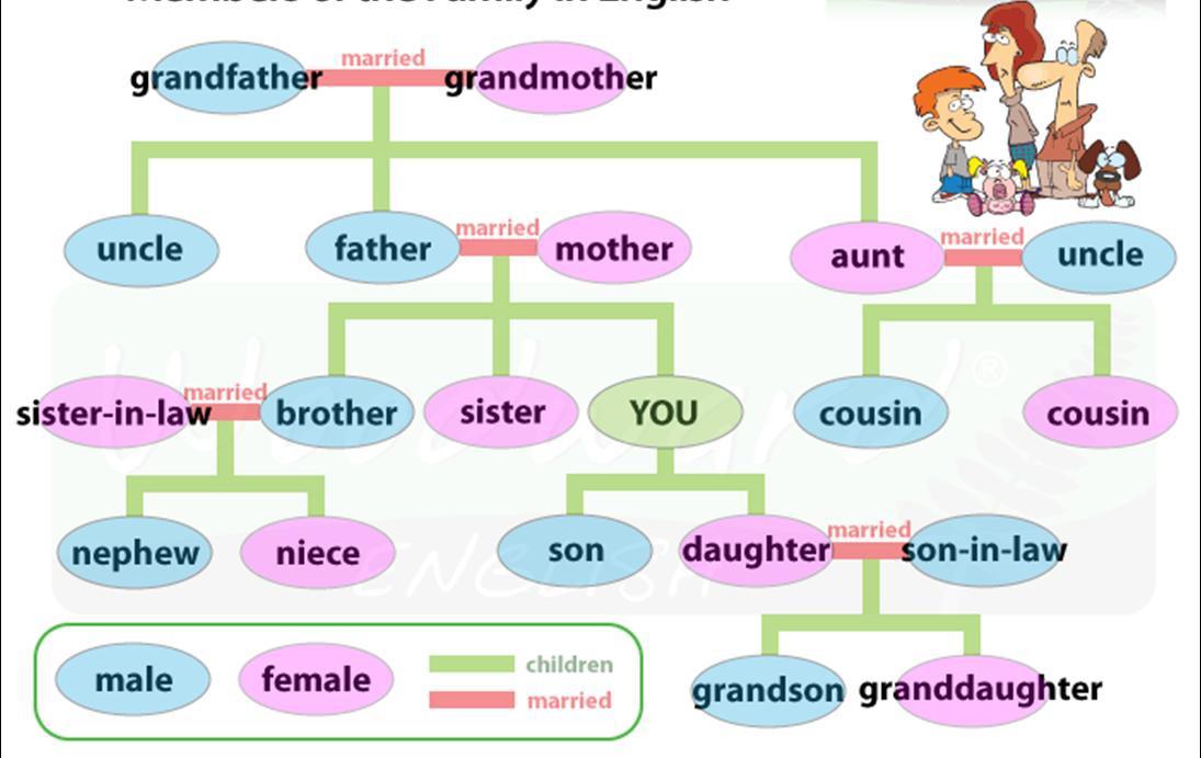 Английские слова связанные с семьей