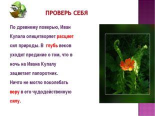 По древнему поверью, Иван Купала олицетворяет расцвет сил природы. В глубь ве