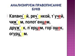 Каланч`ой, реч`онкой, т`учей, чиж`ом, полот`енцем, друж`ок, п`ерцем, гор`ошек