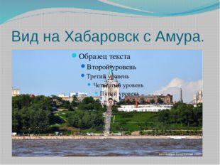 Вид на Хабаровск с Амура.