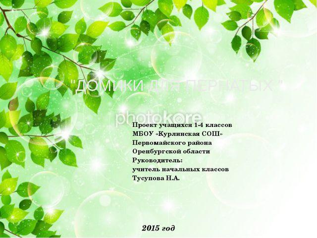 Проект учащихся 1-4 классов МБОУ «Курлинская СОШ» Первомайского района Оренб...