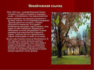 Михайловская ссылка. Июль 1824 года – усилиями Воронцова Пушкин отстранен от