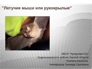 ″Летучие мыши или рукокрылые″ МБОУ ″Кукарская ОШ″ Седельниковского района Омс
