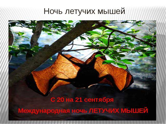 Ночь летучих мышей С 20 на 21 сентября Международная ночь ЛЕТУЧИХ МЫШЕЙ