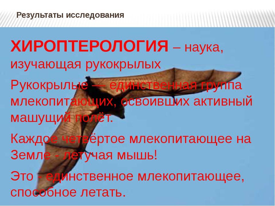 Результаты исследования ХИРОПТЕРОЛОГИЯ – наука, изучающая рукокрылых Рукокрыл...