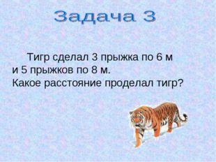 Тигр сделал 3 прыжка по 6 м и 5 прыжков по 8 м. Какое расстояние проделал ти