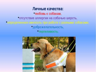 Личные качества: любовь к собакам, отсутствие аллергии на собачью шерсть, опр