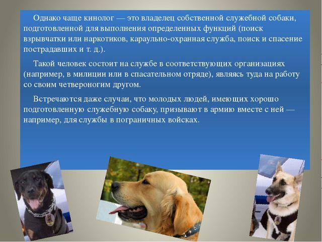 Однако чаще кинолог — это владелец собственной служебной собаки, подготовлен...