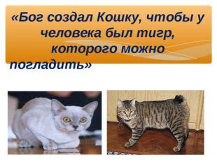 «Бог создал Кошку, чтобы у человека был тигр, которого можно погладить» В. Г