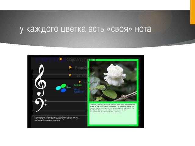 у каждого цветка есть «своя» нота
