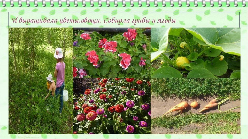 И выращивала цветы,овощи. Собирла грибы и ягоды
