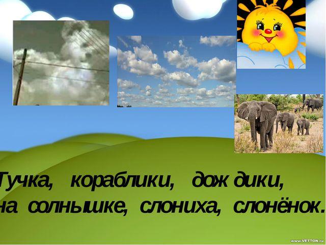 Тучка, кораблики, дождики, на солнышке, слониха, слонёнок.