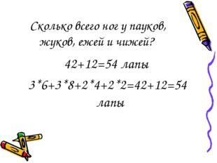 Сколько всего ног у пауков, жуков, ежей и чижей? 42+12=54 лапы 3*6+3*8+2*4+2*