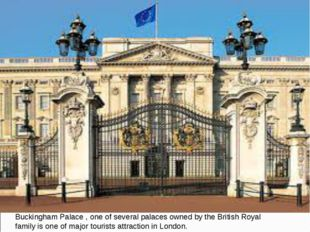 Buckingham Palace , one of several palaces owned by the British Royal family