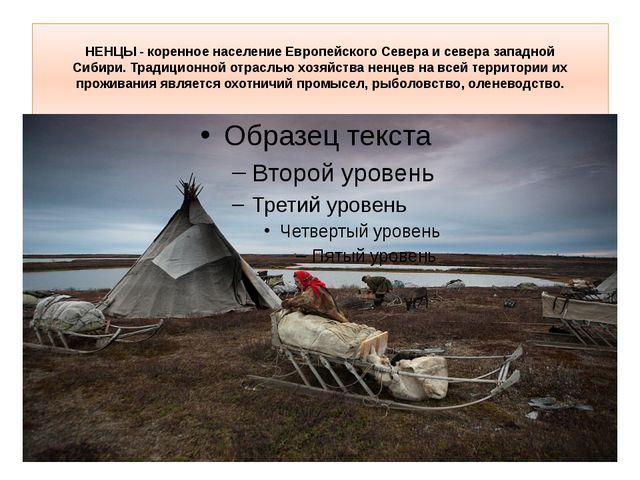 НЕНЦЫ- коренное население Европейского Севера и севера западной Сибири.Трад...