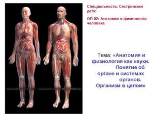 Специальность: Сестринское дело ОП 02: Анатомия и физиология человека Тема: «