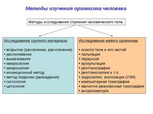 Методы изучения организма человека Методы исследования строения человеческого